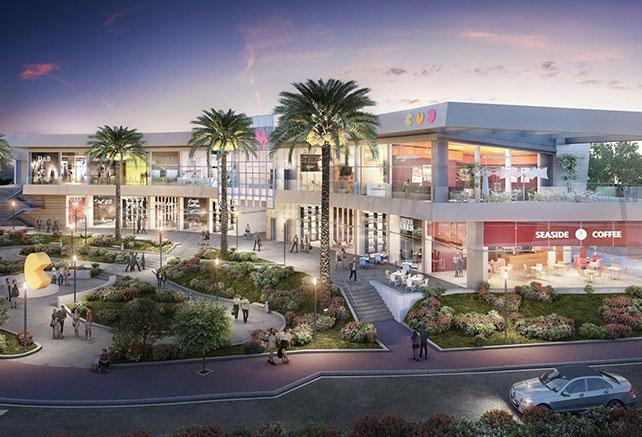 Malibu Center, NES Ziona